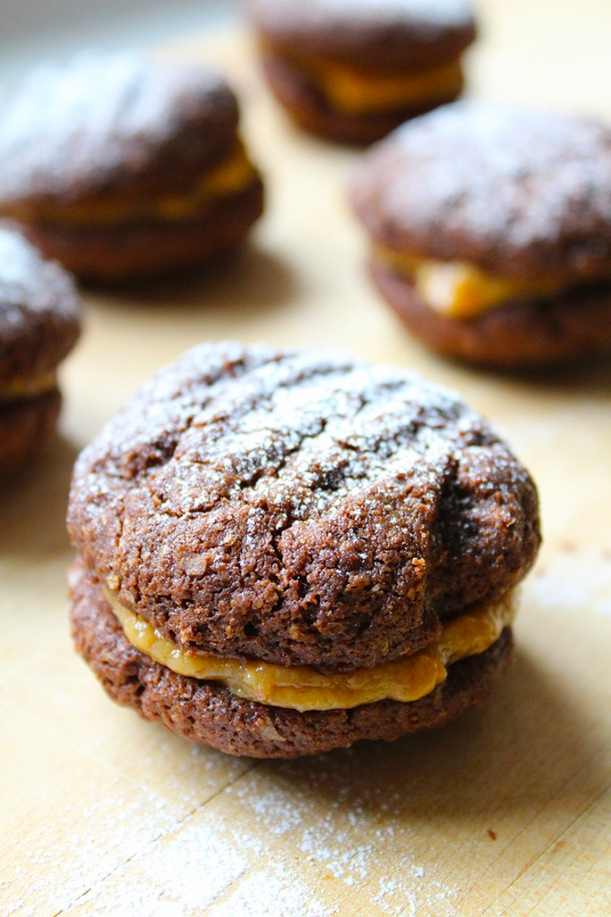wholewheat chocolate biscuits 10